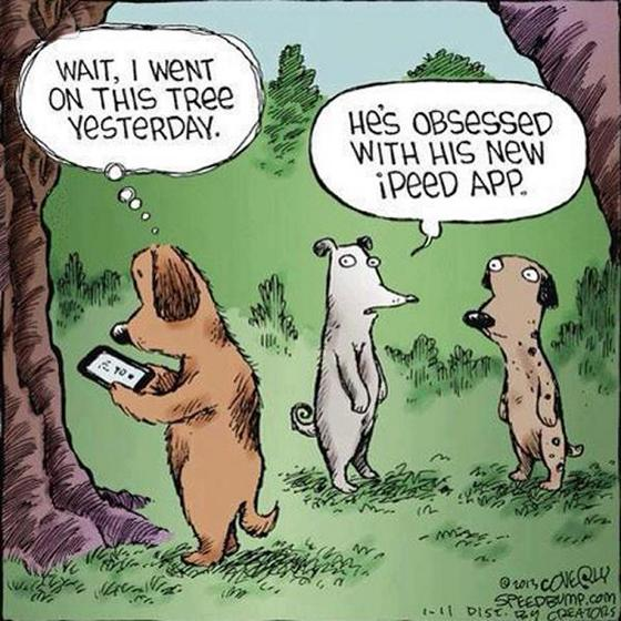 Dog Cartoon iPeed App