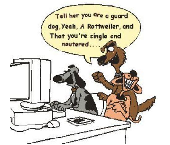 Dog Cartoon, Dog learning IT